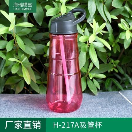 塑料运动水杯 H-217A吸管杯 户外便携水壶 环保不含BPA水杯