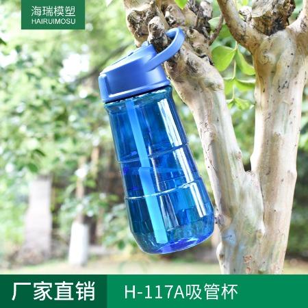 厂家直销 大容量吸管杯 户外运动水杯 运动水壶 大容量H-117A