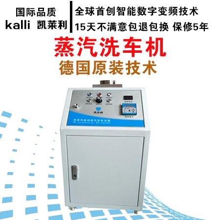 蒸汽洗车机 洗车机好用吗