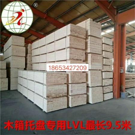 全国直销9.5米长免熏蒸LVL木方 LVL多层板 杨木LVL顺向板包装用