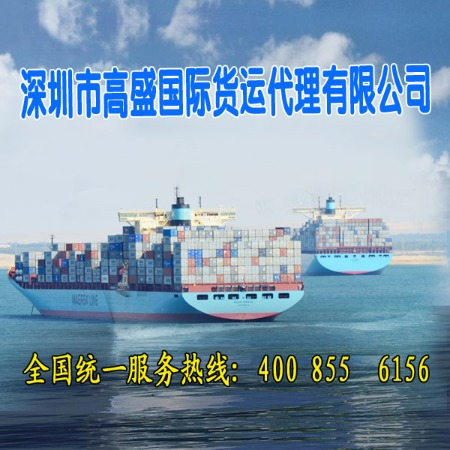 供应到Beograd /贝尔格莱德(塞尔维亚)国际海运集装箱 国际海运