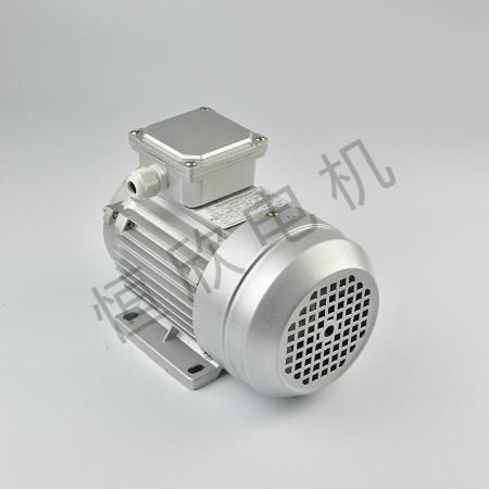 宁波恒欣电机厂三相异步电动机YS系列HX-028