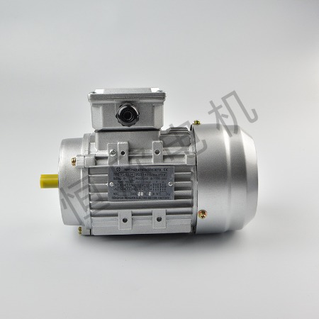 宁波恒欣电机厂三相异步电动机YE2系列HX-011
