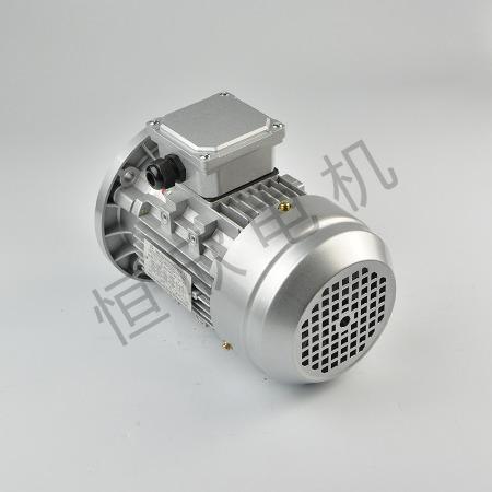 宁波恒欣电机厂三相异步电动机YS系列HX-035