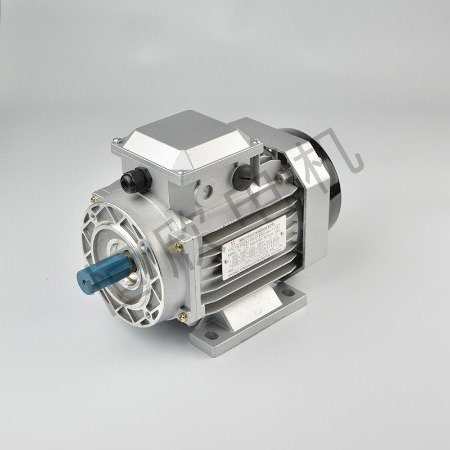 宁波恒欣电机厂三相异步电动机YE2系列HX-013
