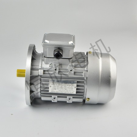 宁波恒欣电机厂三相异步电动机YS系列HX-041