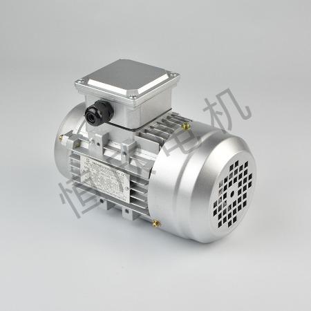 宁波恒欣电机厂三相异步电动机YS系列HX-023