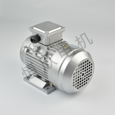宁波恒欣电机厂三相异步电动机YS系列HX-024
