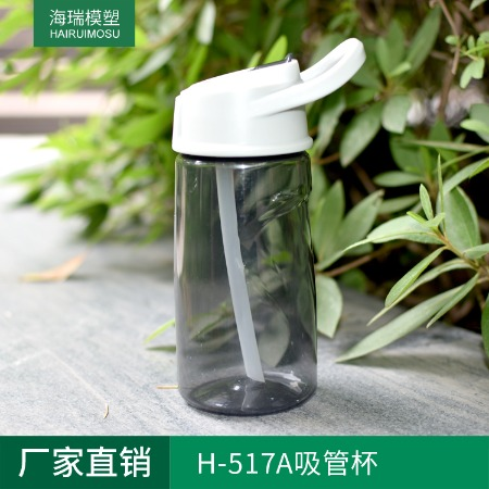 厂家直销 H-517A塑料运动水壶定制 大容量随性杯子 TRITAN不含BPA