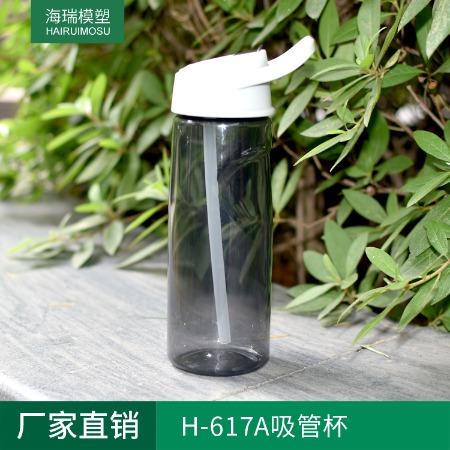 厂家直销 H-617A透明便携运动水壶 便携户外水杯 太空杯 不含BPA