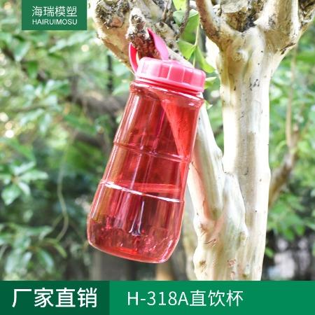 H-318A直饮杯 大容量便携水壶 多款可定制运动水杯 户外水壶