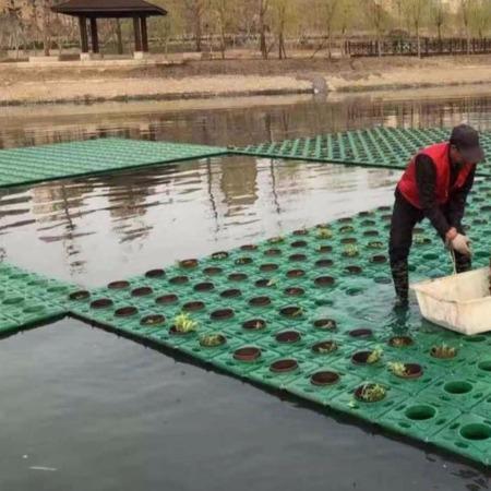 水上生态浮岛 植物种植浮床 人工浮板定制