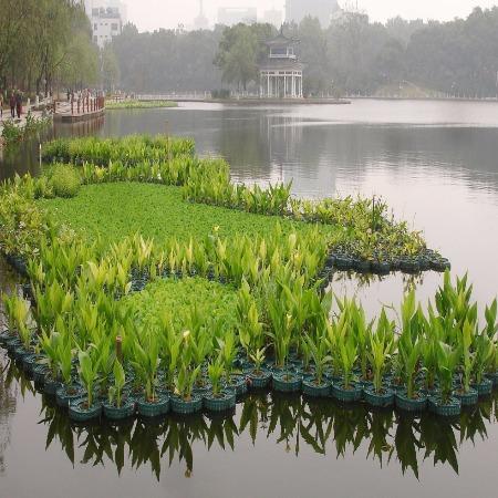 大型水上生态浮岛 人工浮桥 生态浮床 环保浮桥厂家