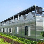 河南满天星农业科技有限公司