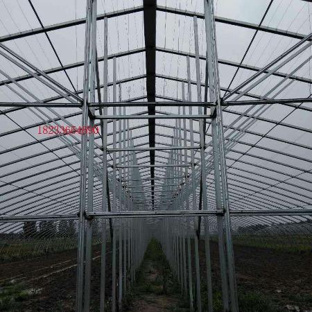大棚镀锌钢管 农用大棚钢管 蔬菜大棚管 草莓大棚管