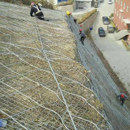 边坡防护网 主动/被动防护网 环形网 绞唆网