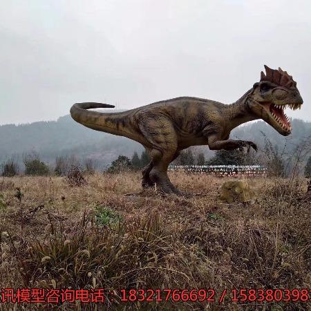 仿真恐龙模型厂家 恐龙展出租出售