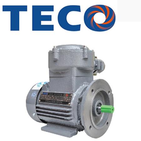 TECO粉尘防爆系列 东元防爆电机 TECO电机