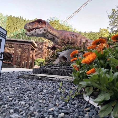 弘讯___大型恐龙展厂家 机械恐龙模型制作 恐龙展出租出售