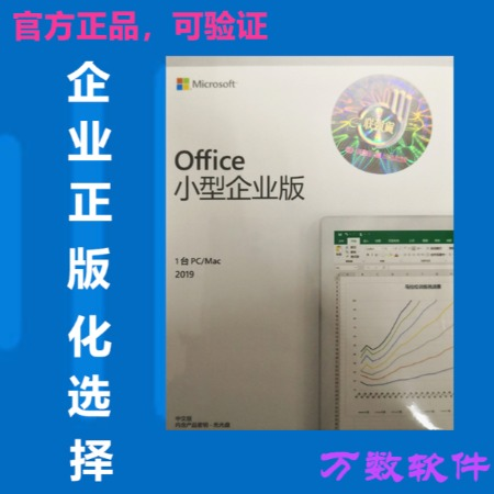 微软正版office2019 小型企业版 办公软件 企业正版化 选择 盒装支持win、MAC系统