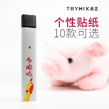 TRYMIX反正充电式烟杠变装贴纸潮流SWAG英伦无厘男女加盟价格面议