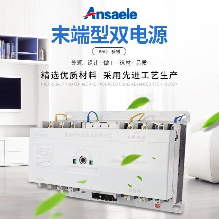 上海安上 供应万能转换开关ASQ1末端型双电源自动转换开关CB级电动塑壳式