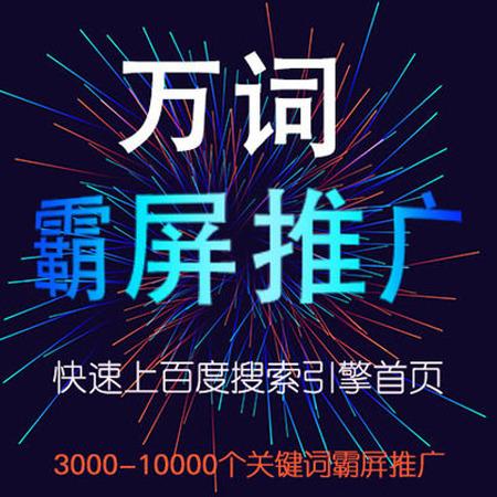 核心词速排 SEO网站优化 万词速排 天之涯 南京优化