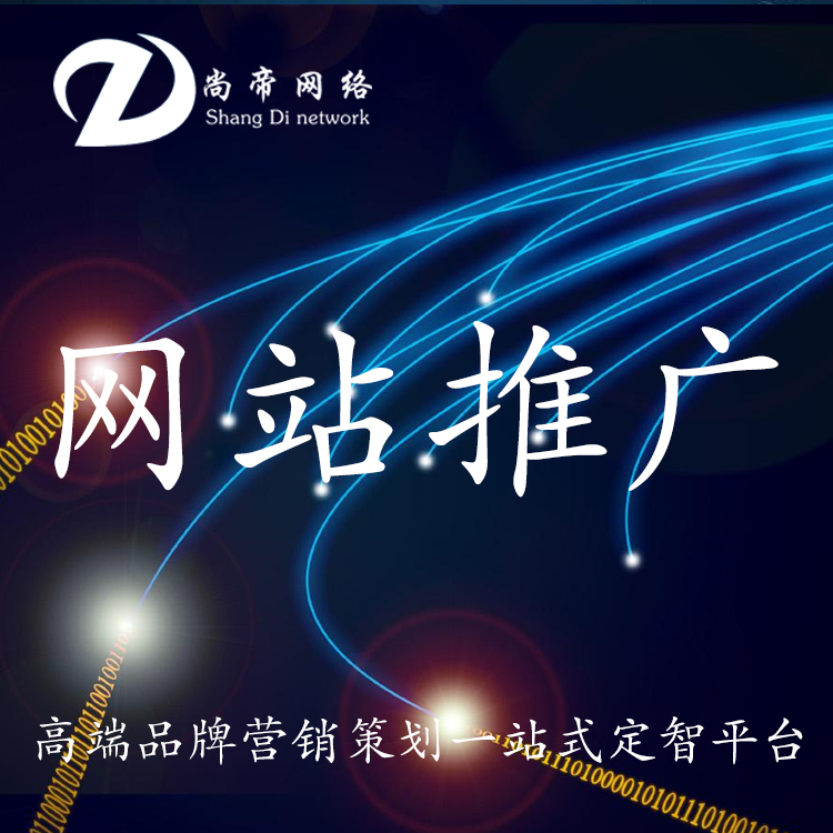 网站推广_网站制作推广_尚帝科技_让客户满意