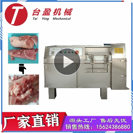 台盈TYW-350型切肉丁机 商用切肉条机 厂家直销多功能鲜肉/冻肉加工机械