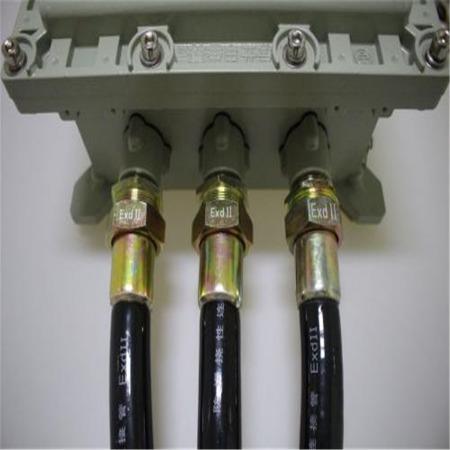 现货供应不锈钢防爆挠性管 dn40防爆挠性管 橡胶护套连接管 厂家定制