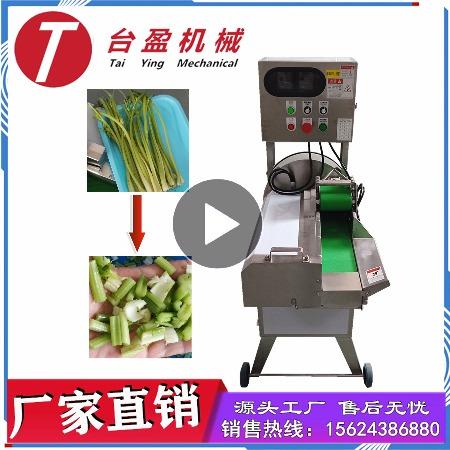 台盈TYW-805型芹菜切段机 商用切芹菜机 厂家直销多功能切菜机