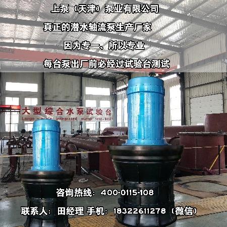 叶片可调节式潜水轴流泵,耦合式潜水轴流泵
