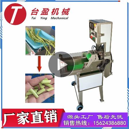 台盈TYW-805型蒜苔切段机 商用切蒜苔机 厂家直销多功能切菜机