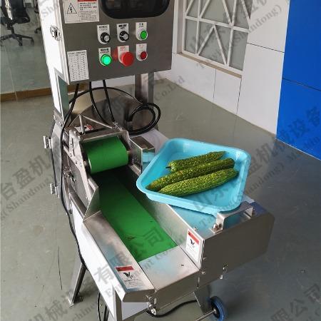 台盈TYW-805型苦瓜切片机 商用切苦瓜片机 厂家直销全自动切菜机