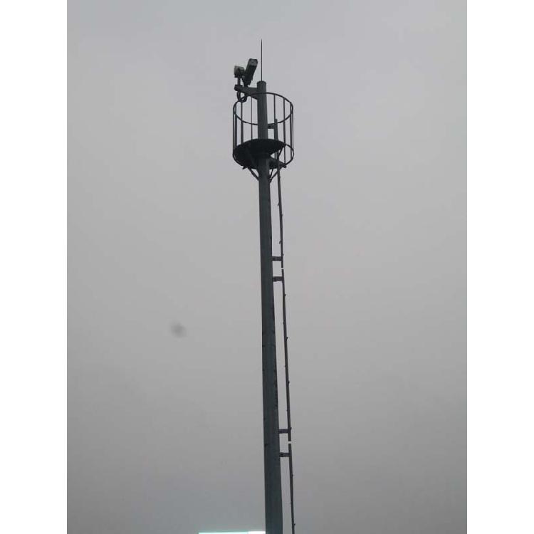 10米监控塔