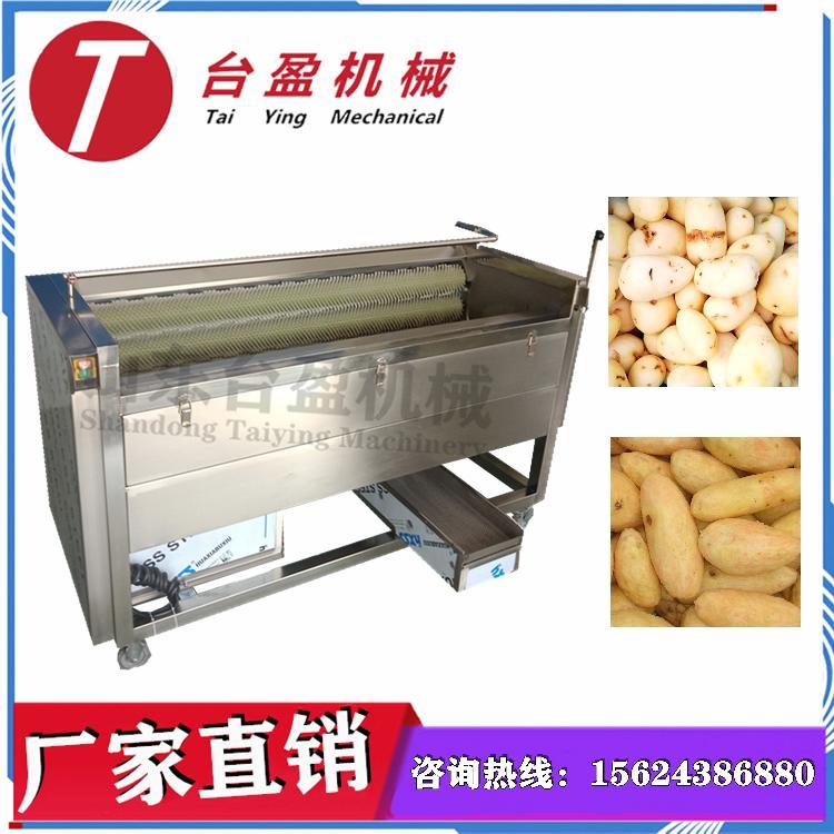 台盈TYW-907型  红薯清洗机 红薯清洗去皮机 清洗去皮二合一多用途毛刷清洗去皮机