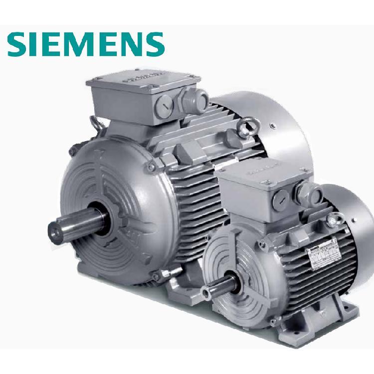 西门子高效电机 SIMOTICS 1LE0001系列 高效低压 3级能效 铸铁电机 超大功率 可选装