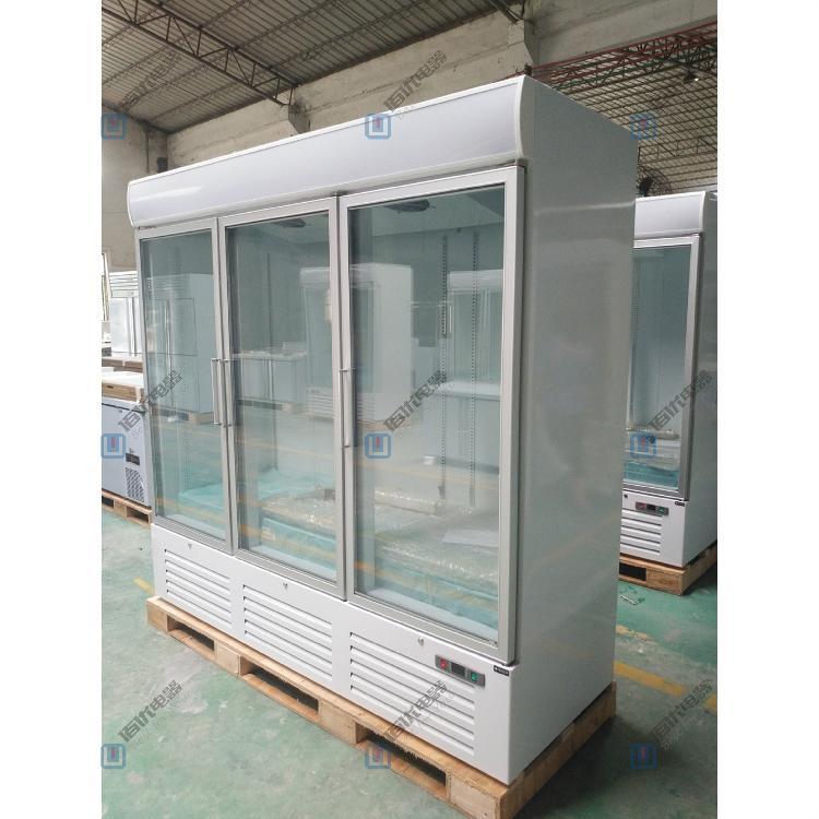 冷冻立式展示柜,冷冻展示柜品牌,冷冻展示柜多少钱,保鲜冷冻展示柜【佰优冷柜】!