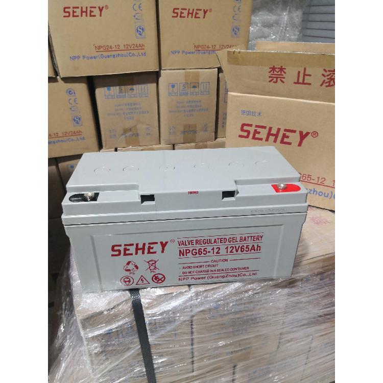 耐普NPG12-65AH,免维护胶体蓄电池,质保三年