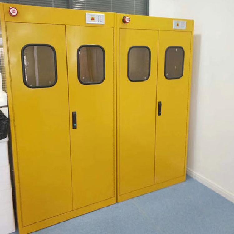 全钢气瓶柜 质量保证 厂家直销 霏特 实验室设备 实验室气瓶柜