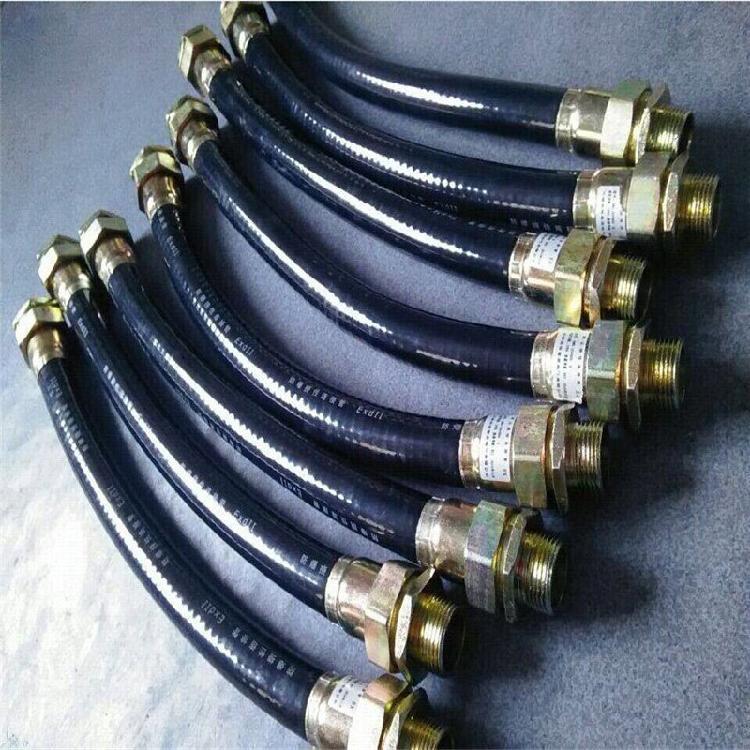 防爆软管 防爆挠性连接软管 加工定制4分6分防爆穿线管 现货供应