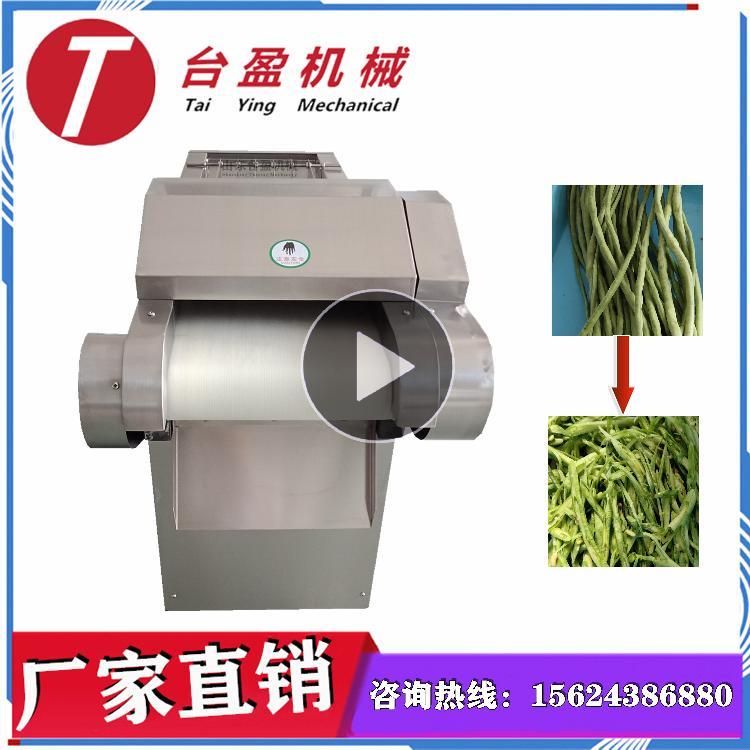 台盈TYW-300型 长豆角切丝机 切长豆角丝机 商用多功能滚刀式切菜机