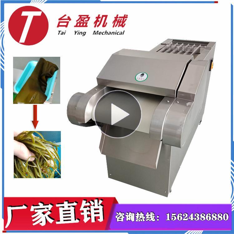 台盈TYW-300型 海带切丝机 切海带丝机 商用多功能滚刀式切菜机