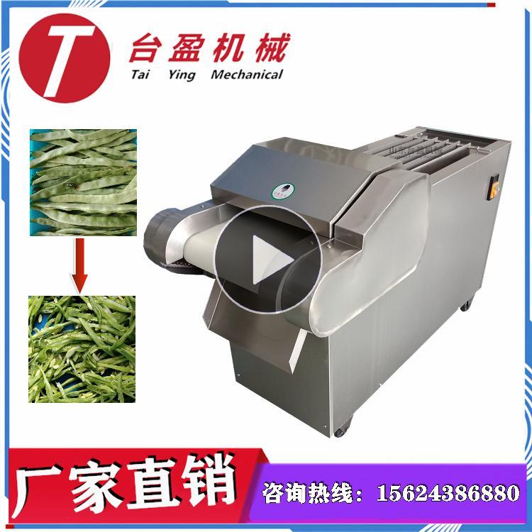 台盈TYW-300型 扁豆切丝机 切扁豆丝机 商用多功能滚刀式切菜机