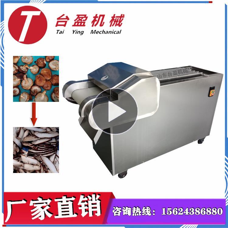 台盈TYW-300型 香菇切片机 切香菇片机 商用多功能滚刀式切菜机