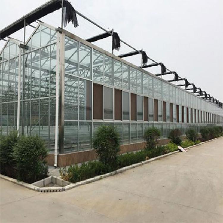满天星农业科技-生态餐厅温室大棚造价-玻璃温室大棚安装建设