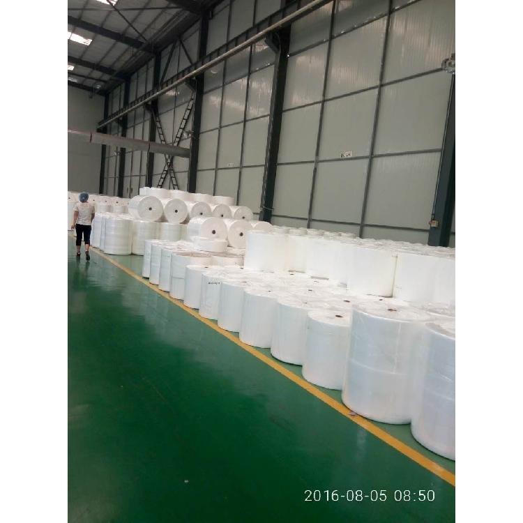 供应ss纺粘无纺布 白色亲水无纺布发货及时