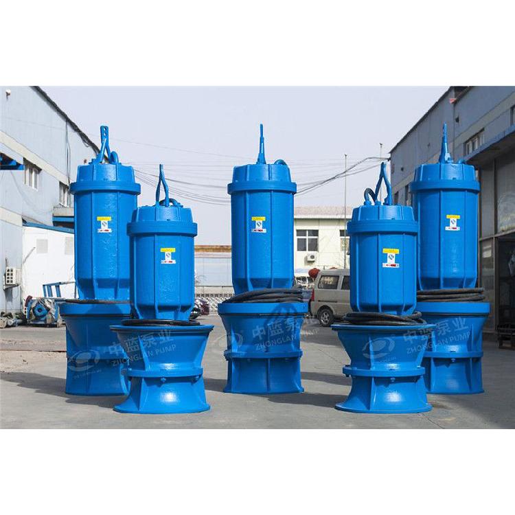 天津大型潜水轴流泵生产厂家
