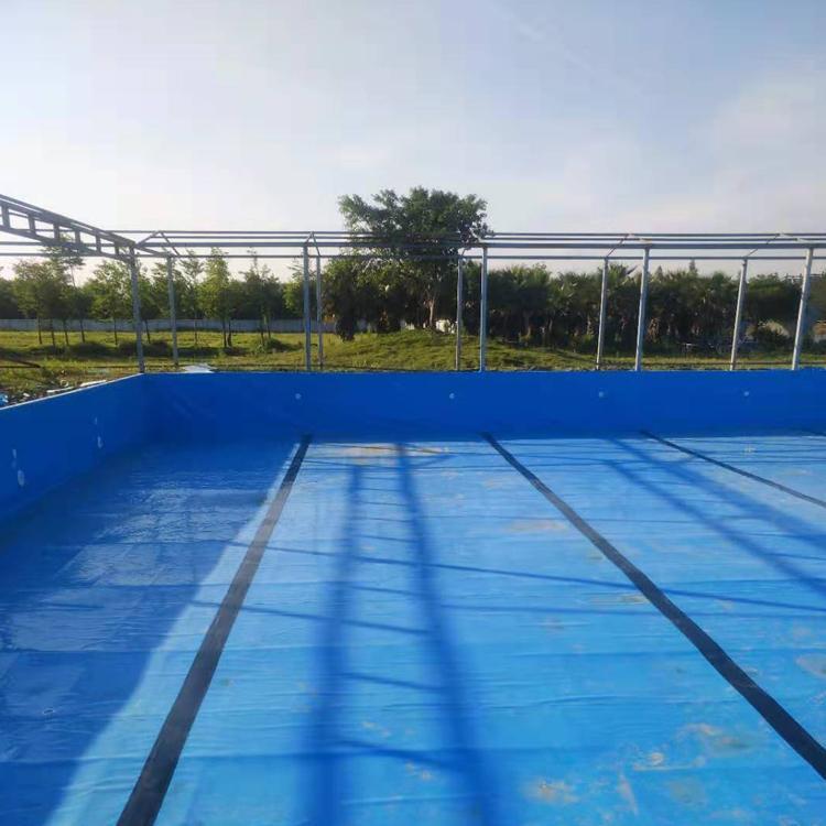 雨洁环保 钢结构游泳池 室内游泳池 恒温游泳池 专业承建大型游泳池工程 学校恒温游泳池