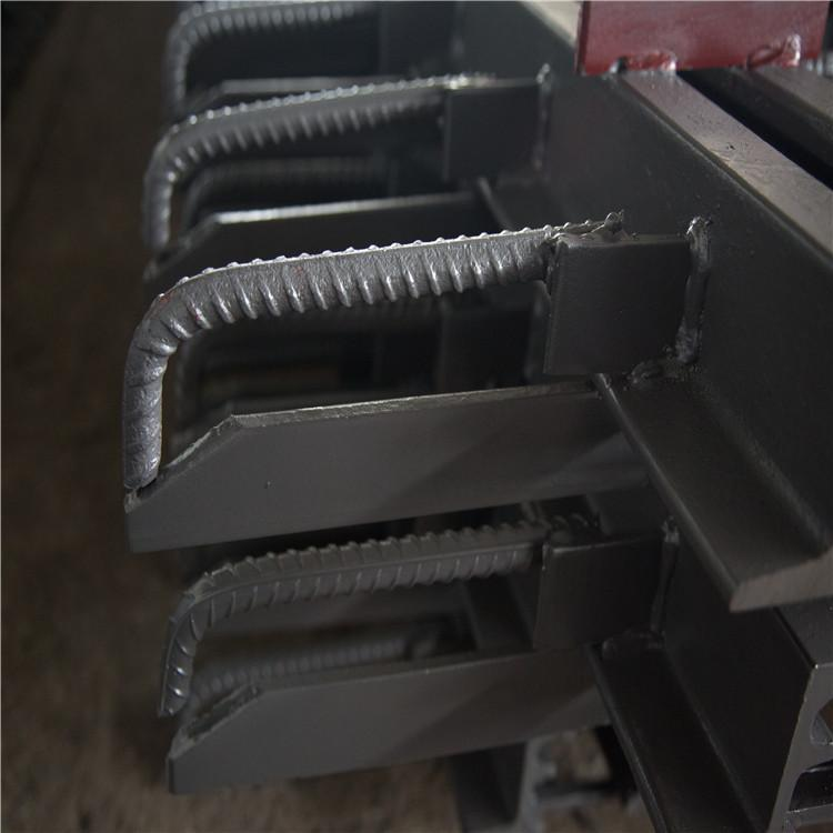 桥梁伸缩缝 衡水锐键专业生产各种型号伸缩缝